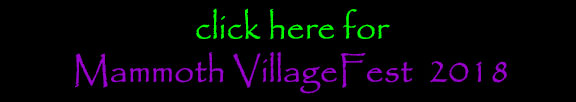 Visit VillageFest website